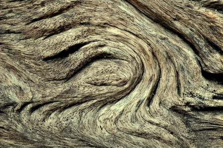 wood grain photo