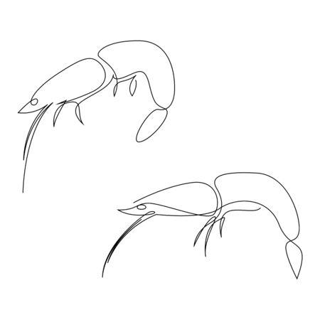 Shrimp illustration drawn by one line. Minimalist style vector illustration