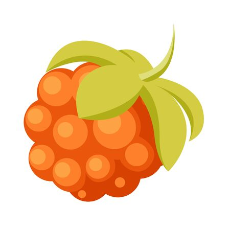 Single Cloudberry with Leaves Icon. Vector illustration