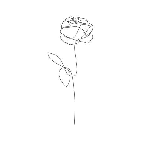 Una linea disegnata a mano rosa. Rosa a stelo lungo. Illustrazione vettoriale di fiore a linea singola
