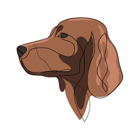 Continuous line Irish Setter. Single line minimal style Setter dog vector illustration