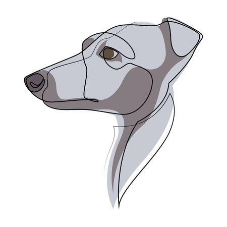 Continuous line Whippet. Single line minimal style English Whippet or Snap dog vector illustration