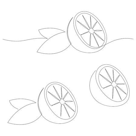 Orange fruit illustration. One continuous line minimal style. Vector