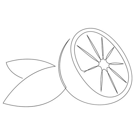 Orange fruit illustration. One continuous line minimal style. Vector