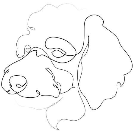 Poodle vector Dog portrait. Continuous line. Dog line drawing