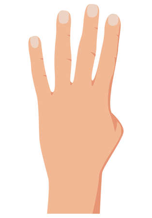 Hand gesture counting four, realistic counting hand illustration. Number 4 hand gesture. Isolated on white backgound. Vector Фото со стока - 158712155