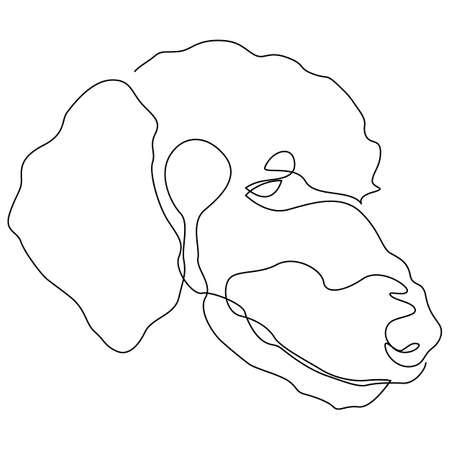 Single continuous line poodle dog portrait. Dog head one line drawing. Vector illustration.