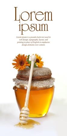 honey and marigolds Standard-Bild