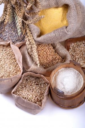 Flour and various grains photo