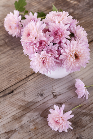 magenta flowers: magenta flowers in a white vase on a wooden board