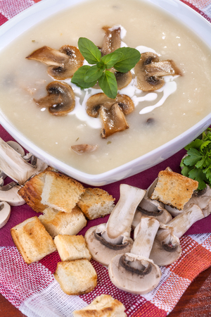 domestic mushroom soup with cream and toasted bread photo
