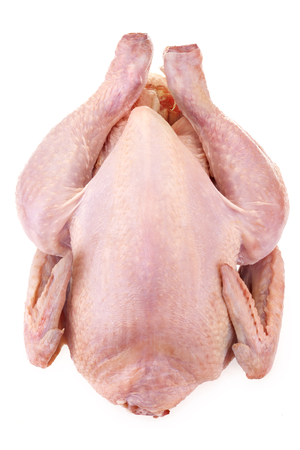 fresh domestic chicken isolated on white background photo