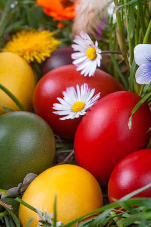 Colourful traditionally painted Easter eggs in the grass and flowers photo