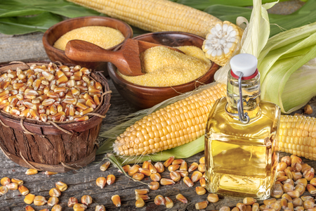 corn kernel: Freshly picked domestic corn with grits polenta and corn oil