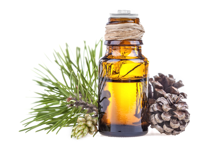 Essential oil made from pine on a white background Foto de archivo