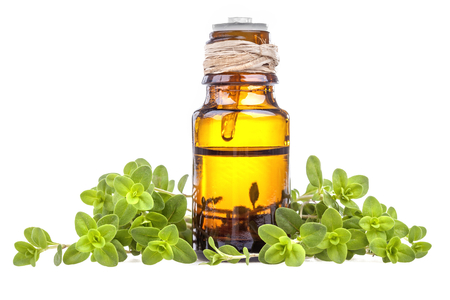 Essential oil made from marjoram on a white background Stockfoto