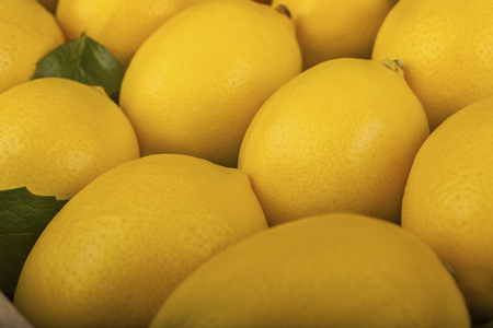A series of healthy lemon set as background