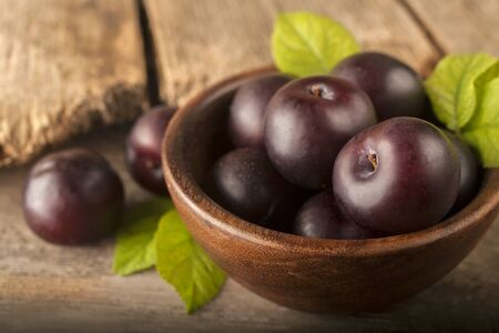 Freshly harvested healthy organic plums in a bowl