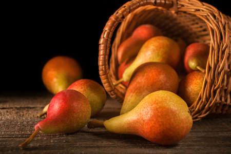 Fresh picked local healthy organic pears in a basket on a rustic wooden table. The concept of healthy eating and nutrition. Vintage style composition.
