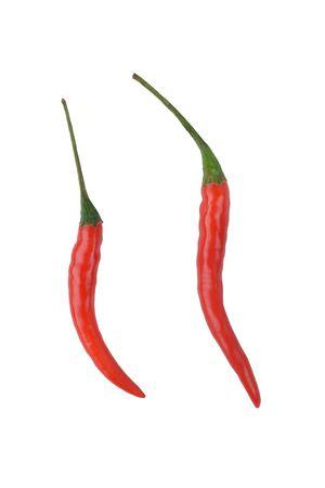 capsicum plant: red pepper
