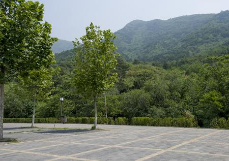 lot: parking lot