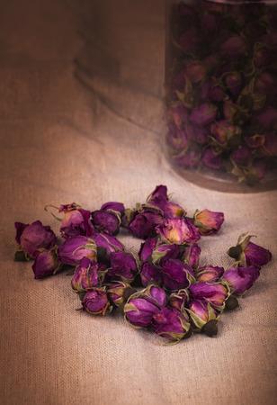 therapeutics: Dried damask rose.