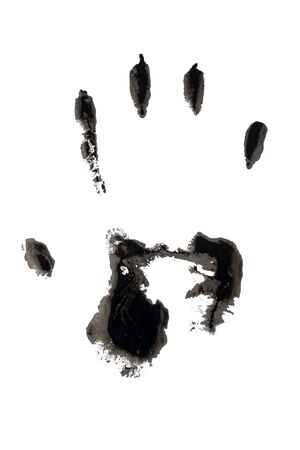 hand print: Hand print on the white background