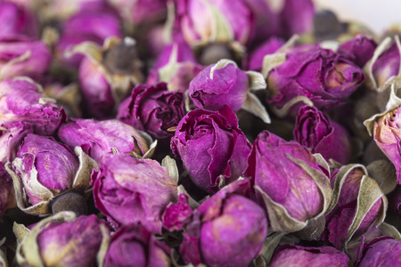 Dried Rosa damascena mainly used for production of rose oil and pink water and therapies Stock Photo