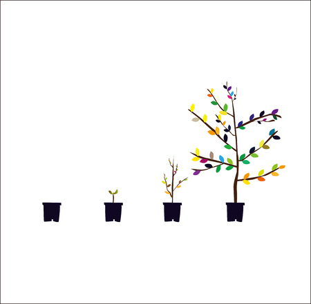 proceso de crecimiento de plantas Ilustración de vector