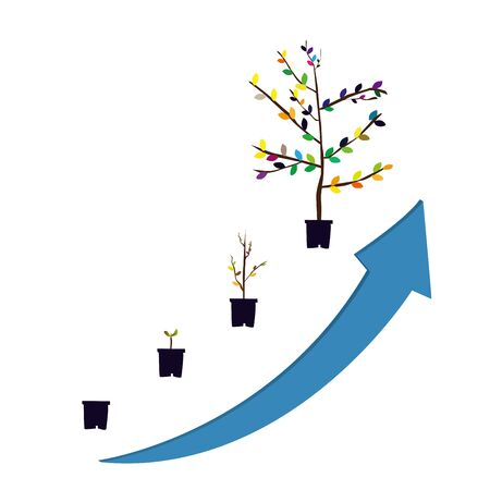 seeding: a flower at differents stages of growth. Illustration