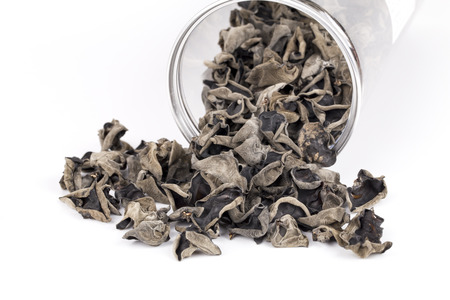 cloud ear fungus: Dried chinese black fungus and container on the white background Stock Photo