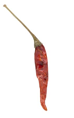 chiles secos: Secado de chile rojo aislado en el fondo. Foto de archivo
