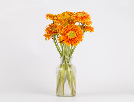Yellow flowers in a vase on the white background