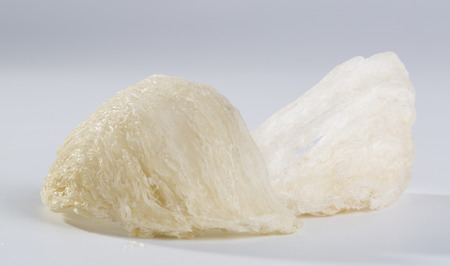 Edible bird nest with the white background. Bird nests that are prepared and eaten by humans, particularly prized in Chinese culture