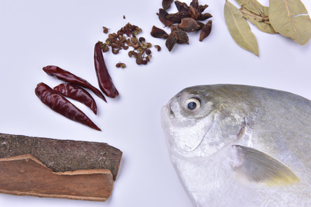 Pomfret and spices on the white background.
