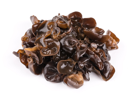 Black fungus on white background