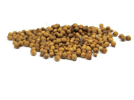 Coriander seeds on  a white background         photo