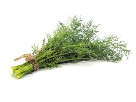 bunch of fresh dill on a white background photo