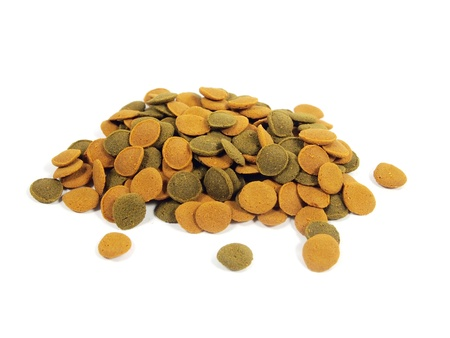 congregate: fish food for aquarium on a white background