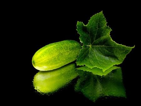 verse komkommer met blad op een zwarte achtergrond met water druppel
