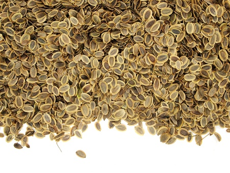 dill seed: dill seed on a white background   Stock Photo