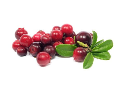 fresh cranberries on a white background