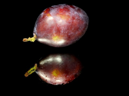 fresh plum on a black background with water drops Stock Photo - 11250494