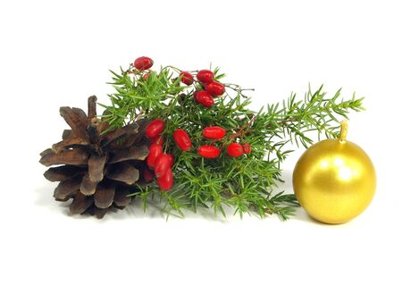 barbery: christmas still life on a white background