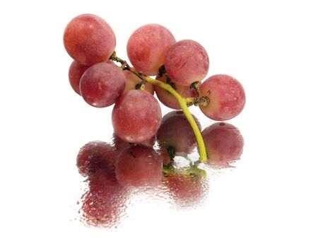bunch of red grapes on a white background with water drops   photo