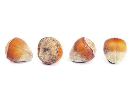 hulled: hazelnuts on a white background Stock Photo