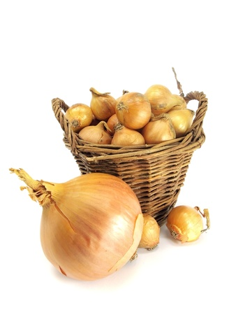 onion bulbs in basket on a white background photo
