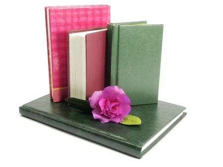 books and azalea flower on  white background   photo