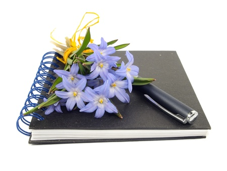 Chionodoxa Luciliae, pen and notebook on a white background       photo