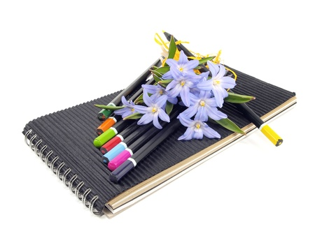 Chionodoxa Luciliae, color pencils and sketchbook on a white background    photo